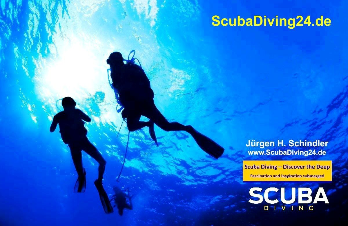 Scuba Diving Community Worldwide