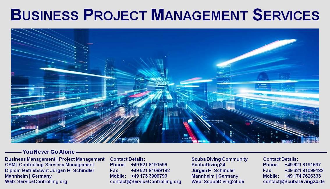 Flyer Project Management Services